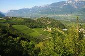 Trentino Alto Adige landscape. Panoramic view of a farm — Stock Photo