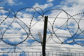 Barbed wire and sky — Stock Photo