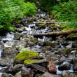 Mountainside Stream — Stock Photo