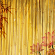 Lotus and bamboo background — Stock Photo