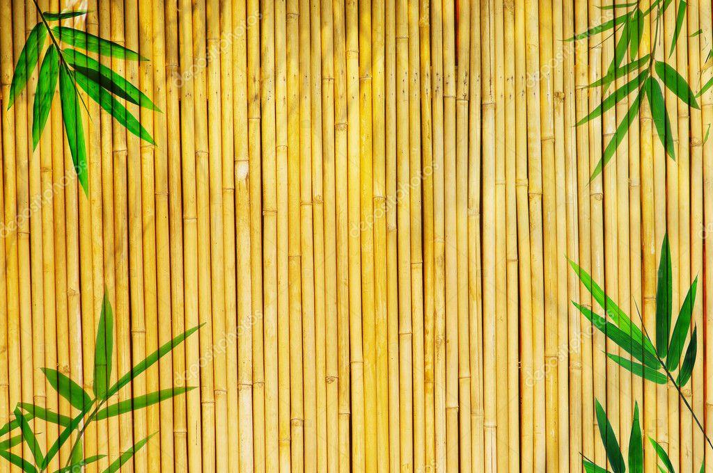 Bambou dor 233 l 233 ger fond id 233 al pour n importe quel projet cadre de