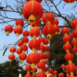 Festive chinese red lantern decorations — Foto de Stock