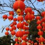 Festive chinese red lantern decorations — Stock Photo #5450394