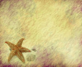 Starfish with old grunge antique paper texture — Stock Photo