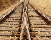 Rail Road Tracks - electrical. Looking down the train tracks — Stock Photo