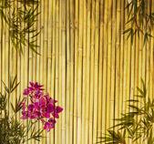 Fondo de fondos vintage con orquídea — Foto de Stock