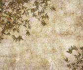 Silhouette of branches of a bamboo on paper background — Stock Photo