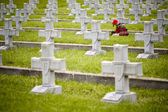 Military cemetery crosses — Stock Photo