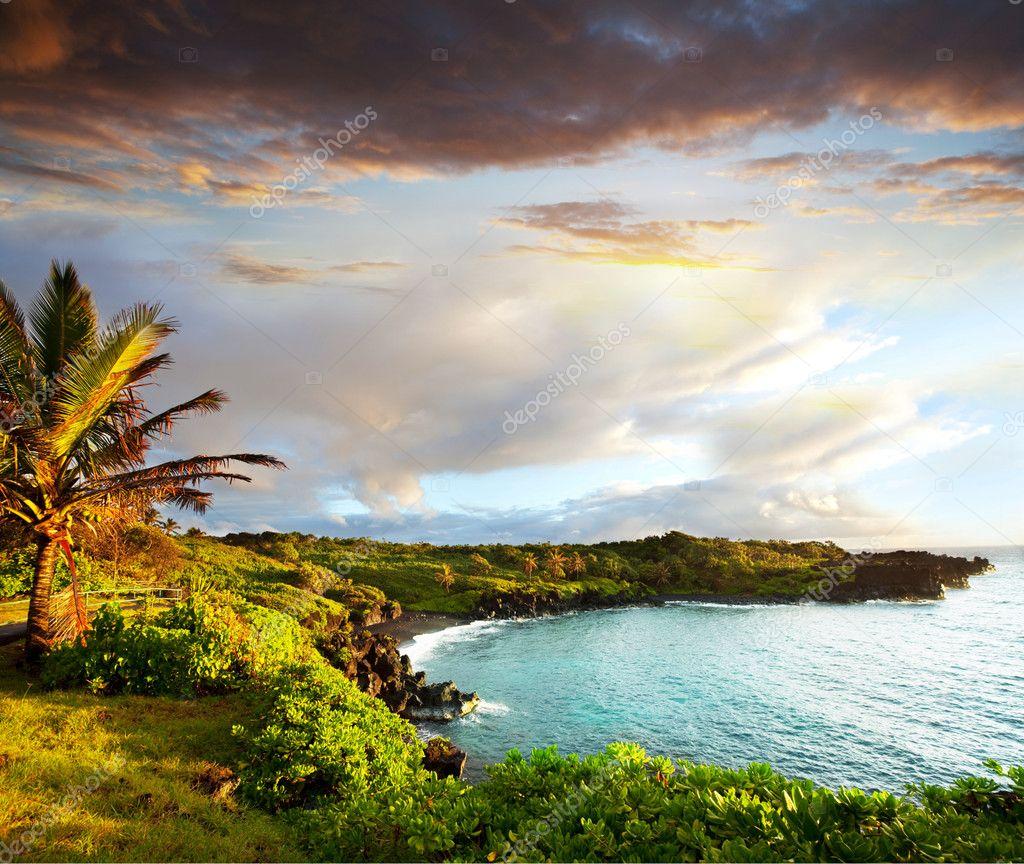 stock image of hawaiian - photo #35