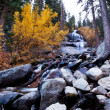 Autumn creek — Stock Photo #5828603