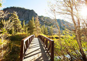 Autumn in Sierra Nevada — Stock Photo