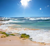 Cenário de praia — Fotografia Stock