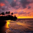 Tropical beach on Hawaii — Stock Photo #5877000