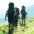 Stock Photo: In summer hike