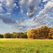Autumn field — Stock Photo