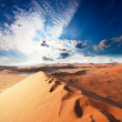 Desert — Stock Photo #6563594