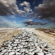 Stock Photo: Drought desert