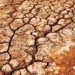 Drought texture — Stock Photo