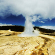 Geyser — Stock Photo #6564504
