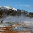 Stock Photo: Mon Mammoth Hot Spring