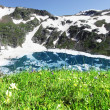 Meadow on mountains lake — Stock Photo
