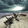 Stock Photo: Skeleton coast