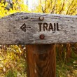 Stock Photo: Trail