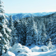 Winter mountains — Stock Photo