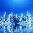 Winters forest — Stock Photo