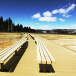 Yellowstone park — Stock Photo #6569314
