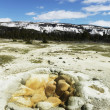 Yellowstone — Stock Photo #6569330