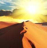 Desert on sunset — Stock Photo