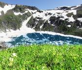 Meadow on mountains lake — Stock Photo
