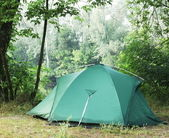 Tent in the forest — Photo