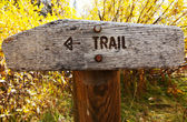 Trail — Stock Photo