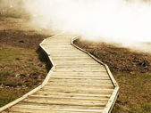 Wooden trail — Stock Photo