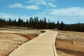 Yellowstone — Stock Photo