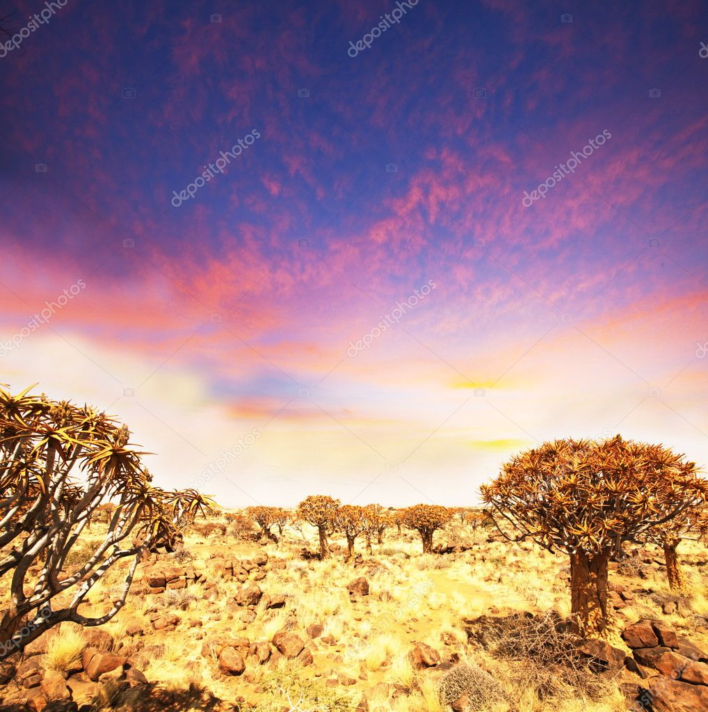 African mountains — Stock Photo #6560638