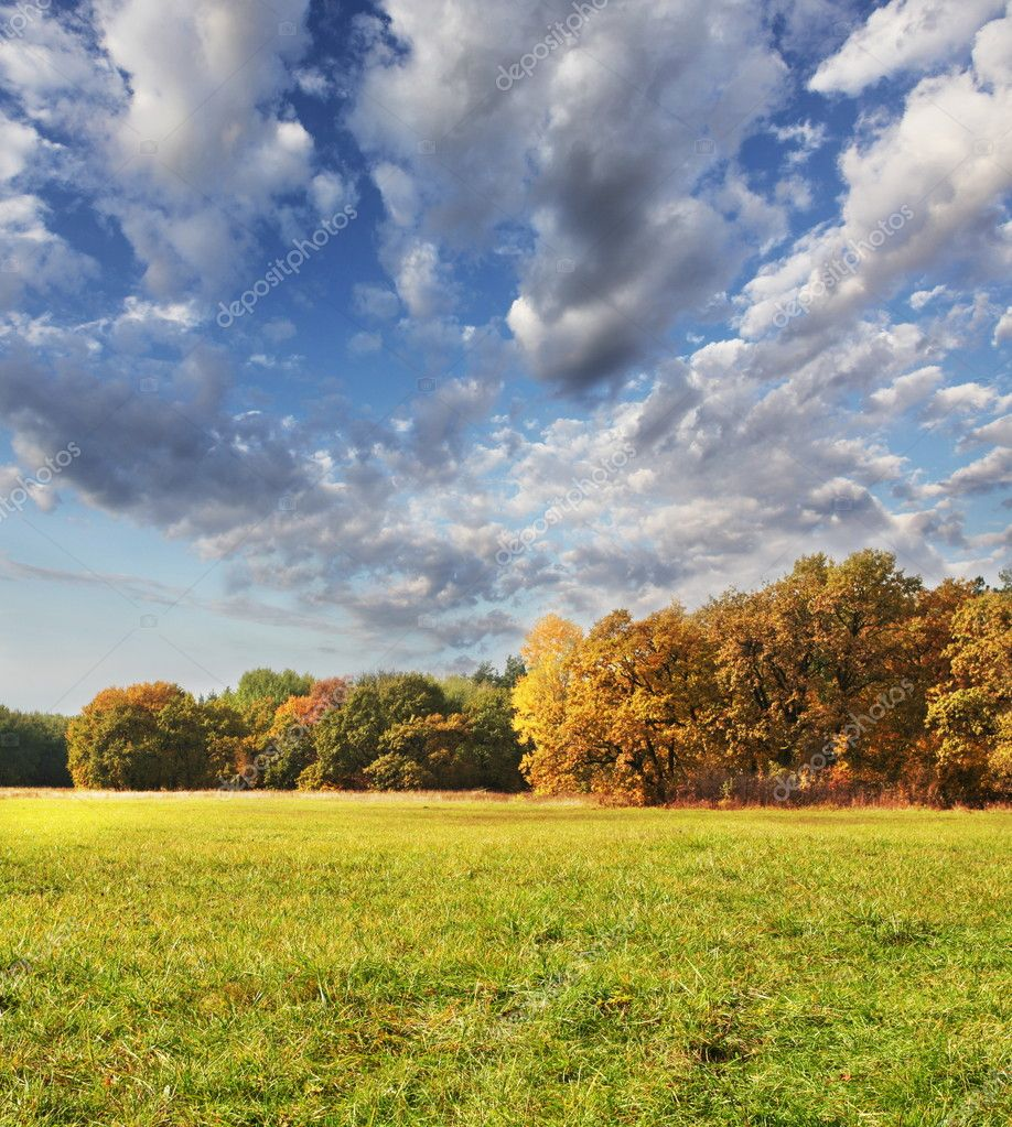 Autumn fields — Stock Photo #6561581
