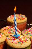 Cupcake compleanno — Foto Stock