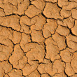 Foto Stock: Cracked clay ground