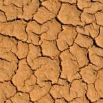 Трещины земли глины — Стоковое фото