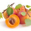 Apricot with leaves — Stock Photo #5851291