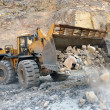 Wheel loader machine — Stock Photo #5851313
