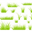 Grass isolated — Stock Vector