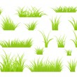 Stock Vector: Grass isolated