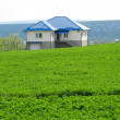 Lonely living house in middle of green meadow - Stock Photo