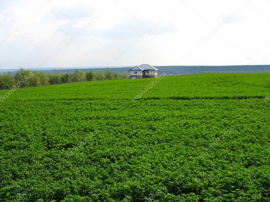 Lonely living house in the middle of green meadow — Stock Photo #5788075
