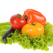 Green salad and tomato isolated on the white background — Stock Photo