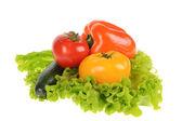 Ensalada verde y tomate aislada en el fondo blanco — Foto de Stock